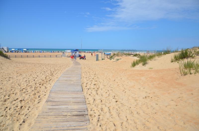Куда поехать отдыхать на Черном море с детьми
