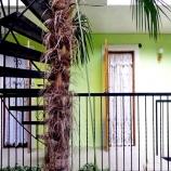 Мини пансионат Зеленый дворик в Рыбачьем